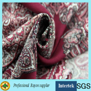 Plain Weave Rayon Print Fabric for Summer Clothes pictures & photos