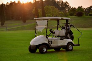 2014 Latest Design High Quality Mni Electric Golf Vehicle Golf Cart pictures & photos
