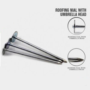 Professional Roofing Nails Umbrella Nails Manufacture From China pictures & photos