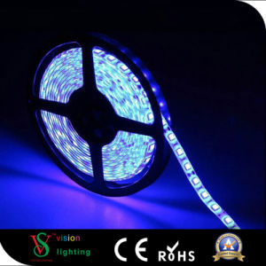 Indoor Decoration IP20 LED Strip pictures & photos