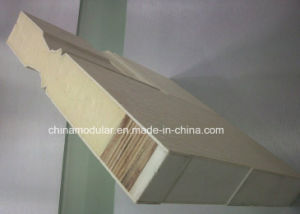 Fibreglass Door for U. S. a and Canada (CHAM-AFD001) pictures & photos