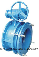 Worm Gear Telescopic Flange Butterfly Valve