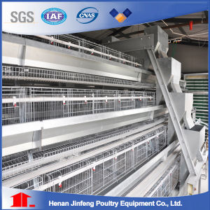 Automatic Poultry Equipment Pullet Cages pictures & photos
