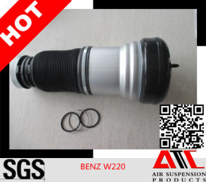 Manufacturer Shock Absorber for Mercedes Benz W220 pictures & photos