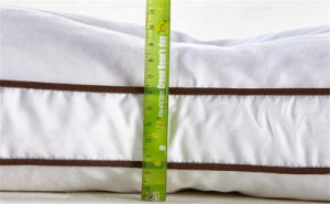People Classify Bed Pillow Skin Friendly Fashiom Cushion Pillow pictures & photos