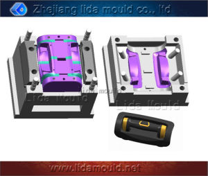 Plastic Product Mould for Trolley Luggage (D01SS)