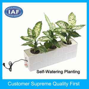 Factory Custom Self Watering Hydroponics Plastic Flower Pot pictures & photos