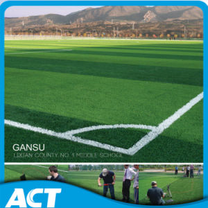 Guangzhou Artificial Football Grass for Soccer Turf W50 pictures & photos