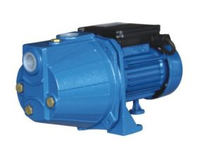 Self-Priming Jet Pump for Irrigation (JET60S) pictures & photos