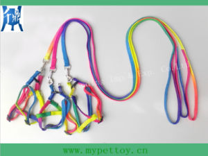 Wholsale Dog Leash (Nylon Material) pictures & photos
