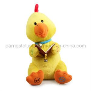 story chicken