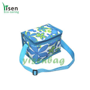 Food Cooler Bag, Picnic Bag (YSCB00-0153-01) pictures & photos
