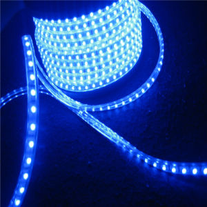 Outdoor SMD5050 LED Strip Light