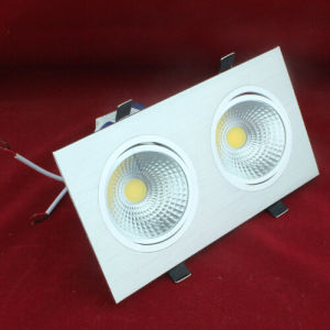 Good Quality 10W 20W COB LED Downlight 2*10W pictures & photos
