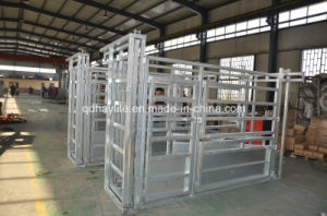 Hot Dipped Galvanised Cattle Squeeze Chute pictures & photos