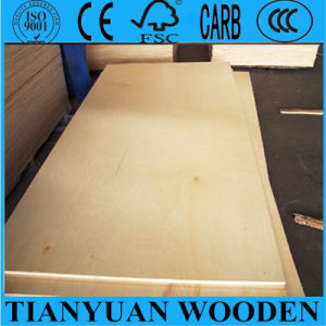E2 Glue Furniture Birch Plywood for Vietnam Market pictures & photos