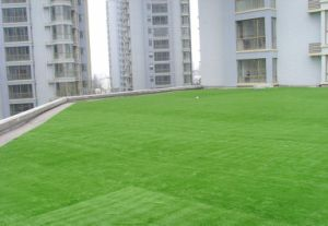Multi-Purpose Artificial Grass 2016 Excellent Supplier pictures & photos