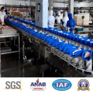 Seafood Poutry Automatic High Precision SUS 304 Food Machinery pictures & photos