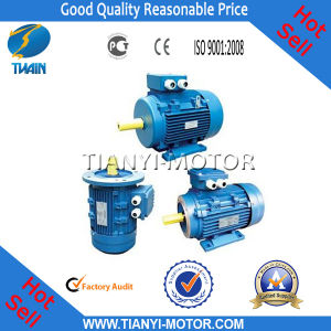 Professional Manufacturer of Motor Y2 (Y2-802-2) pictures & photos