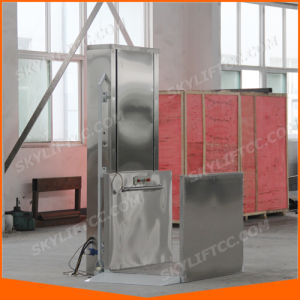 Ce ISO 2m Vertical Wheelchair Lift for Disabled and Elderly pictures & photos