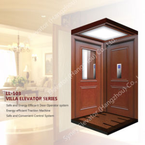 320kg Villa Elevator House Lift, Home Lift (LL-103) pictures & photos