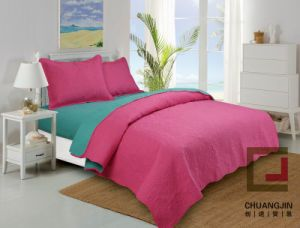 100%Polyester Ultrasonic Quilt (BEDDING SET) Bicolors pictures & photos