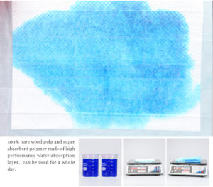Training Pads with High Absorbent for Pet Dog 50CT and 100CT pictures & photos