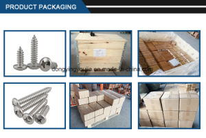 Cross Recessed Pan Head Tapping Screws pictures & photos