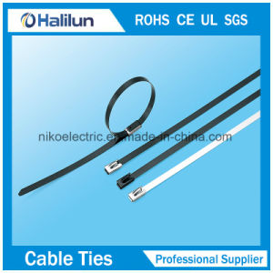 Naked Stainless Steel Self Lock Cable Tie for Electricity pictures & photos