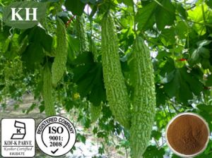 Supply 100% Natural Bitter Melon Extract Saponins 3%-10% pictures & photos