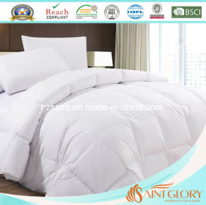 All Season Comforter Siliconized Fiberfill Duvet Insert Down Alternative Comforter pictures & photos