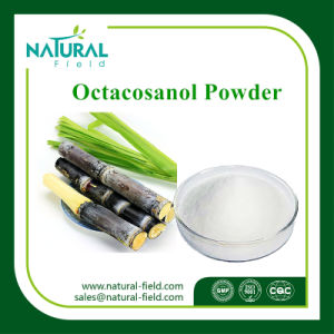 Factory Supply Sugar Cane Wax Extract Powder, Sugar Cane Wax Extract Octacosanol Powder pictures & photos