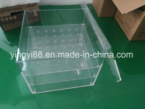 Personalized Acrylic Flower Box /Plastic Rose Box pictures & photos