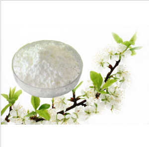CAS: 54965-21-8 Sell High Purity 99% Veterinary Drug Albendazole pictures & photos