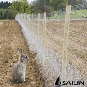 Sailin Hexagonal Galvanized Wire Netting for Chicken Farm pictures & photos