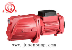 Farm Machinery Jet100L Water Pump Egypt