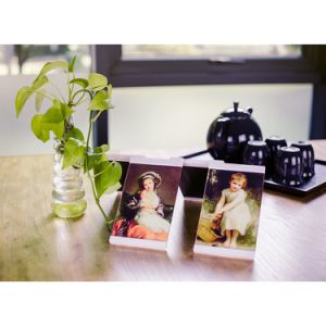 """4""""*6""""Leggy Horse New Style Acrylic PU Photo Frame/Picture Frame with 4 Piece Set pictures & photos"""