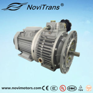 Three Phase Permanent Magnet Synchronous Motor Flexible Motors with Speed Governor (YFM-160/G) pictures & photos