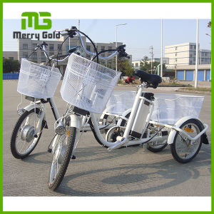 36V 10ah 25km Range Three Wheel Electric Moped Cargo Tricycle pictures & photos