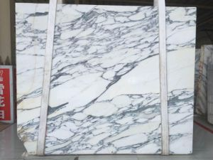 White Arabescato Marble pictures & photos