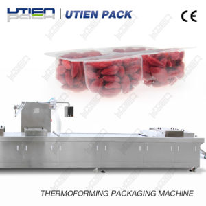 Dry Fruit Thermoforming Vacuum Map Packaging Machinery with CE Certificate pictures & photos