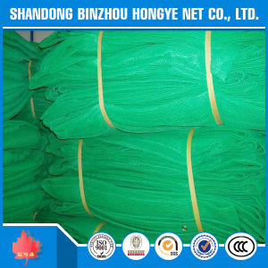Scaffolding Safety Net/Construction Safety Net/Green Plastic Mesh pictures & photos