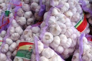 Normal White Garlic in Purple Mesh Bag pictures & photos