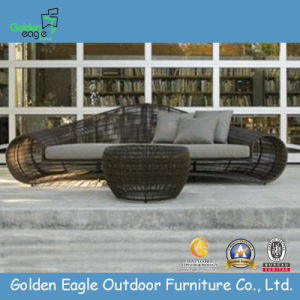 Leisure Patio Rattan Furniture Sunbed