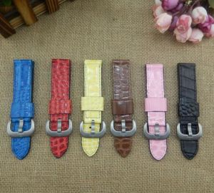 Calf Leather Strap Crocodile Grain Watch Band-Kz1305