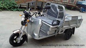 EEC/Ec/Ce/Coc 48V 1000W Electric Cargo Tricycle Made in China pictures & photos