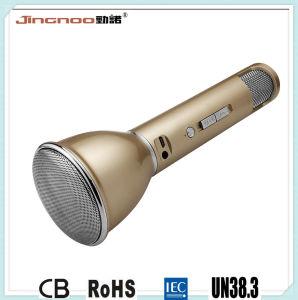 Bluetooth Speaker Ptt Microphone Karaoke Smart Microphone pictures & photos