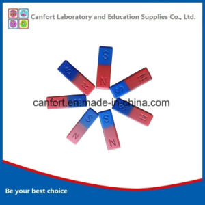 Educational Equipment Bar Magnet for Teaching/School/Children pictures & photos