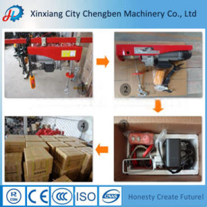 Customized Small/Mini Electric Hoist 110V pictures & photos