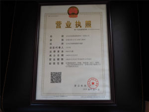 Chinese Earlist & Best Yarn USD for Cable Filler pictures & photos